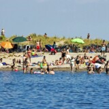 Den danske sommer HAR ikke været god. Foto: Flickr