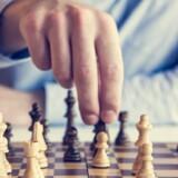 Brætspil hjælper med at holde hjernen igang, viser ny forskning