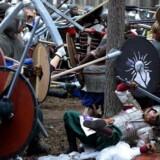 Tolkien-fans leger »Ringenes Herre« et sted i Slovakiet. »Ringenes Herre« er en af de bøger som folk hyppigst hævder at have læst uden at det rent faktisk er tilfældet.