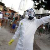 Kommunalmedarbejdere spreder insektgift i byen Recife i Brasilien som led i bekæmpelsen af myggebåren zika-virus.