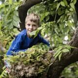6-årige Bue Emil Randrup Andersen er lige flyttet til Nørrebro, men savner Svendborgs kuperede terræn.