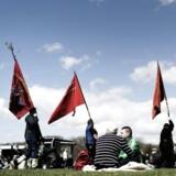 1. maj i Fælledparken, arbejdernes internationale kampdag