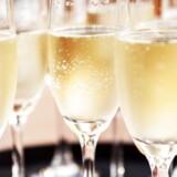 Med »Champagne« har Søren Frank skrevet endnu et referenceværk.
