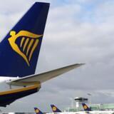 Ryanair aflyser omkring 2000 afgange i løbet af de næste par uger.