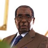 Robert Mugabe, Zimbabwes aldrende præsident, har foræret 300 køer til Den Afrikanske Union (AU) med en hilsen om, at unionen dermed kan blive mindre afhængig af donorer.