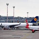 3000 ansatte flytter med fra Air Berlin over til Lufthansa, som overtager 81 af det konkursramte selskabs fly.