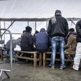 Kun to lander i EU godkender en større del af asylansøgninger end Danmark. (arkivfoto)