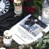 Politimanden Jesper Jul blev i december dræbt i tjeneste. Nu begynder retssagen mod den formodede gerningsmand.