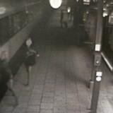 En ulykke på Vejle Station i 2013 har givet anledning til en bitter strid mellem DSB og de ansatte organiseret i Jernbaneforbundet.