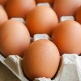 Du har sikkert hørt, at du skal undgå æg, hvis ikke du vil ende med et for højt kolesteroltal. Men det er en myte.