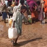 """Arkivfoto. Det er med målløs forundring, at flere internationale eksperter modtager nyheden om, at Danmarks omstridte rapport om Eritrea ikke kun fastholdes men at den ifølge Udlændingestyrelsen er """"god""""."""