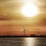 Verdensnaturforden WWF mener, at de danske pensionsselskaber bør kanalisere flere investeringer over i den grønne energi og færre i den sorte.