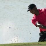 Tiger Woods har foreløbig ingen planer om at finde en ny træner. Scanpix/Kyle Terada