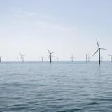 Dong Energy skal opføre den tyske havmøllepark.