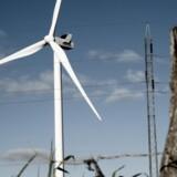 Det er ikke mere end omkring tre år siden, at denne 3,3 MW-vindmølle var blandt de største i Vestas' sortiment. Den nyeste havvindmølle yder hele otte megawatt. Foto: Vestas Wind Systems