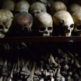 (FILES) A file picture taken on April 4, 2014 shows human skulls exhibited at the Genocide memorial in Nyamata, inside a Catholic church where thousands were slaughtered during the 1994 genocide in Rwanda. Examining magistrates ordered two former Rwanda's burgomasters to stand trial in front of the Assizes Court for their alleged participation in the 1994 genocide, on May 30, 2014 in Paris. AFP PHOTO / SIMON MAINA