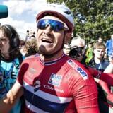 EM Landevejscykling, Herning, linjeløb elie, herrer , 6.august : Alexander Kristoff, Norge, vinder guld. (foto: Henning Bagger / Scanpix 2017)