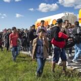 En stor gruppe flygtninge og migranter, der søndag aften ankom til Rødby på Lolland, er mandag den 7. september 2015 begyndt at gå mod nord - angiveligt med et ønske om at søge asyl i Sverige.