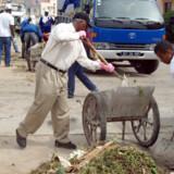 Et oprydningshold er ved at rydde gaderne i Praia, Kap Verdes hovedstad, for at minimere yngle-grundlaget for den type myg der overfører dengue-feber.