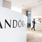 Amerikanske hedgefonde har det meste af 2017 belejret Pandora-aktien. Nøglen til sejr ligger hos de store danske institutionelle investorer, der med deres adfærd kan skræmme hedgefondene væk.