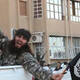 Tilhængere til Islamisk Stat (IS) kører igennem organisationens syriske højborg, byen Rakka. Foto: AFP