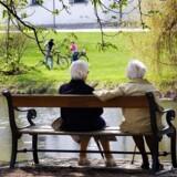 Hos blandt andre Industriens Pension er der ekstra gang i indbetalingerne op til nytår.
