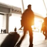 Hver femte danske virksomhed regner med at rette blikket mod udlandet, når ledige stillinger skal besættes i første halvår af 2015.
