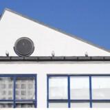 Den Hvide Kødby huser et godt iværksættermiljø. Foto: Torben Christensen