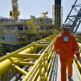 Mærsk gjorde meget for at få forlænget den lukrative olieaftale i golfstaten Qatar, men kom til kort over for det franske diplomati. (Foto: Claus Fisker)