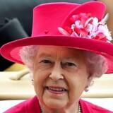 Meget kan man sige om dronning Elizabeth II, men australier er hun ikke, og det skal man være for at lede Australien, mener syv ud af otte australske delstatsledere.