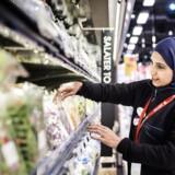 Frederiksberg kommune har netop vedtaget en ny, offensiv strategi, som skal hjælpe flygtninge i arbejde inden for det første år, de opholder sig i kommunen. Det skal ske ved målrettet at give dem færdigheder og danskkundskaber, der passer til de brancher i hovedstadsområdet, hvor det er lettest at finde arbejde.