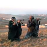 I 2013 lagde Islamisk Stat en propagandavideo ud på nette, hvor fire mænd optrådte med skydevåben – af dem var de to danske. Ifølge en PET-analyse fra sommeren 2014 tilslutter »hovedparten af de udrejste« sig militante islamistiske grupper i Syrien og Irak. Men der er også personer fra Danmark, som rejser til Somalia og tilslutter sig den islamistiske gruppe al-Shabaab.