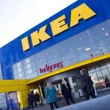 IKEA giver sine ansatte i fem år eller mere en ekstra »lille« julegave på 19.000 kroner.