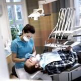 Flygtningelæger og -tandlæger skal vente halvandet år på at kunne komme i arbejde.