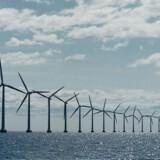 DF glæder sig over, at regeringen skrotter havvindmølleprojekter. Grøn omstilling er for dyr, mener partiet. (Foto: SØREN BIDSTRUP/Scanpix 2016)