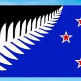 Silver Fern-flaget er udvalgt som det flag, der i marts skal dyste mod New Zealands hidtidige flag. Let er flaget med træbregnen ikke at tegne for den uprøvede hånd.