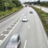 Arkivfoto: De tre dyr var dræbt på stedet, mens bilisten slap uskadt fra påkørslen.