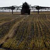 Mange landmænd er økonomisk i knæ, og nu bidrager de omstridte swapaftaler med endnu en pind til ligkisten.