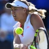 Caroline Wozniacki deltager i WTA Finals for femte gang i karrieren, når der fra søndag spilles i Singapore. Scanpix/Glyn Kirk