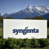 Det er blandt andet en svækkelse af den brasilianske real, som rammer salget i Syngenta, da landmændene i det sydamerikanske land skal betale mere for Syngentas kemikalier og frø.