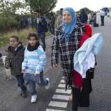 En stor gruppe flygtninge og migranter, der mandag efter klokken 10 ankom til Rødby på Lolland, er begyndt at gå mod nord - angiveligt med et ønske om at søge asyl i Sverige.