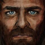 Eske Willerslev har været med til at kortlægge arvematerialet fra den hidtil ældste europæer, og resultatet giver forskerne indblik i, hvem Europas urmenneske var. Han havde ganske bemærkelsesværdigt mørk hud, brunt hår og blå øjne.