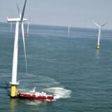 Med et historisk lavt bud på 0,54 kr. per kWh for al grøn havstrøm i de første 15 år vandt DONG Energy over de 37 andre bud i auktionen om Borssele Wind Farm 1 og 2 på samlet 700 megawatt (MW). (Foto: Mathias Løvgreen Bojesen/Scanpix 2016)