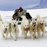 120 fagfolk er i gang med en udredning af, hvordan et beredskab i og omkring Grønland bedst sikres.