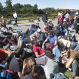 De mange flygtninge og migranter, der kom med tog fra Tyskland, blev i mange tilfælde hjulpet videre til Sverige af danskere.