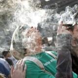 En mand ryger en joint til en pro-marihuana fejring i Denver Colorado i 2010.