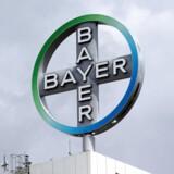 Tysklands tredjestørste virksomhed, medicinal- og kemigiganten Bayer, har de seneste par år haft stor succes med selskabets farmaceutiske produkter i Danmark.