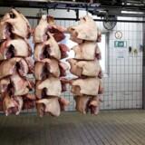 Svinekødsbranchen har tradition for at været præget at store udsving, men den gennemsnitlige landmand har nu haft underskud på griseproduktionen ni år i træk.