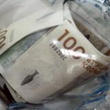 Det koster både penge at tage en risiko og at forsøge at undgå den, understreger Nordeas forbrugerøkonom Ann Lehmann Erichsen.?Foto: Brian Bergmann