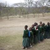 Skolebørn i Tanzania.Arkivfoto: GAVI / KAREL PRINSLOO
